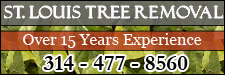St. Louis Tree Removal